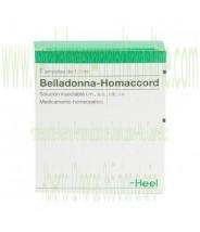 BELLADONNA HOMACCORD 5 AMPOLLAS 1,1 ML