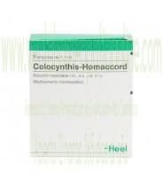 COLOCYNTHIS HOMACCORD 5 AMPOLLAS 1,1 ML