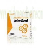 JALEA REAL 24 CAPSULAS 400MG