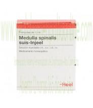 MEDULLA SPINALIS SUIS INJEEL 5 AMPOLLAS 1,1 ML