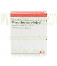 MUSCULUS SUIS INJEEL 5 AMPOLLAS 1,1 ML