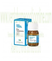 Rhus Toxicodendron complejo nº 80 30 ml - Lehning